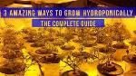 hydroponic-system-grow-6w1